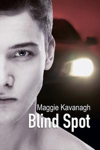 BlindSpotCover_MK