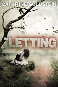 TheLetting_cover