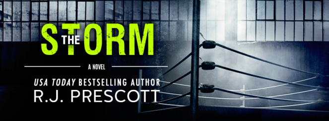 the-storm-sign-up-banner