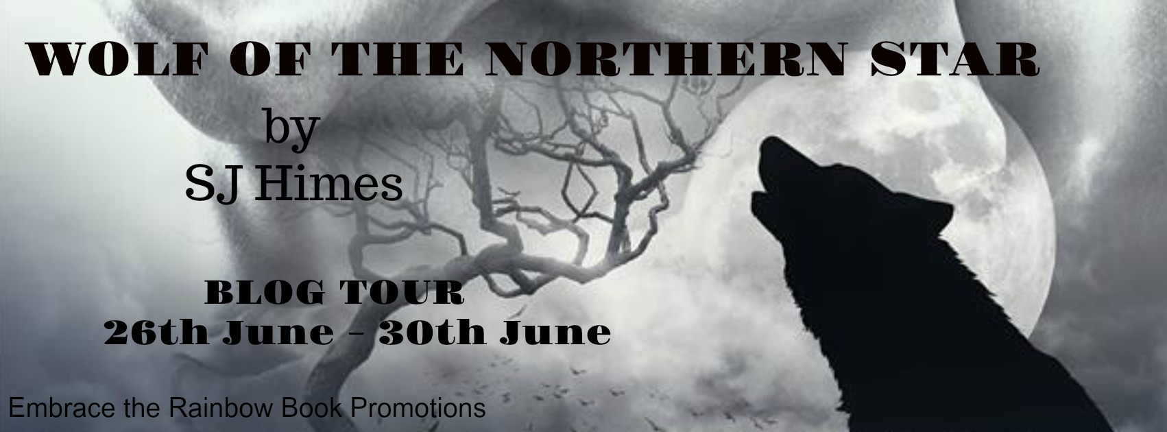Blog Tour: Guestpost, Excerpt & Giveaway  SJ Himes - Wolf of the Nothern Star